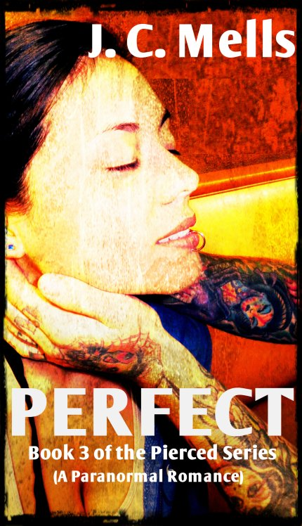 Perfect Cover 2
