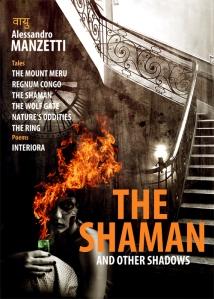SHAMAN_LR