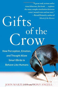 gifts-of-the-crow