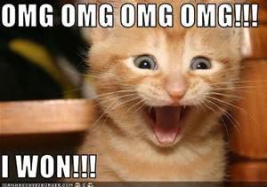 i won kitty_edited